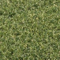 Umělá tráva BOTANICA 466