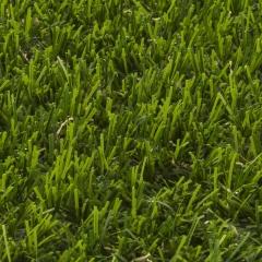 Umělá tráva FLORES 566