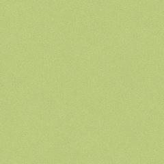 Vinyl A1 LONG LIFE PRO MATRIX IQ 1916